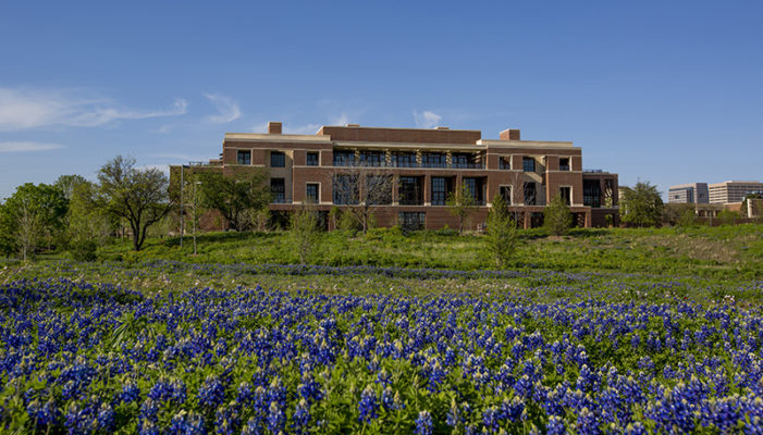 Bluebonnets are blooming at the Bush