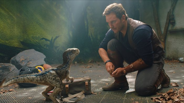 Lack of intelligent thought leads to a 'Fallen Kingdom'